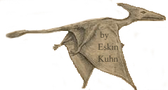 Eskin Kuhn's sketch of pterosaur that fly over a military base in Cuba