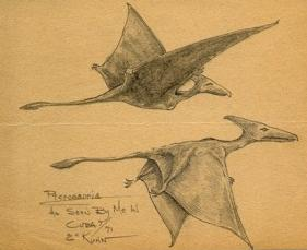 two pterosaurs sketched by Eskin Kuhn