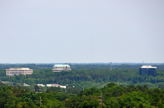 Looking out over the city of Raleigh, North Carolina, with many trees